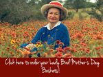 Lady Bird Mother;s Day Baskets 150 x112
